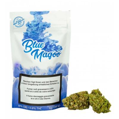 Blue Magoo - Urban Pharm - CBD Blüten