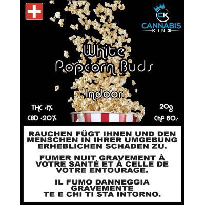 White Popcorn Buds - Cannabis King - Schweizer CBD Blüten, Trim