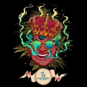 "Sticker ""Olivier Bonhomme"" black - Cannabis King®, Cannabis"