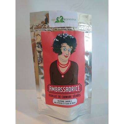 Hemp tea Amabassadrice
