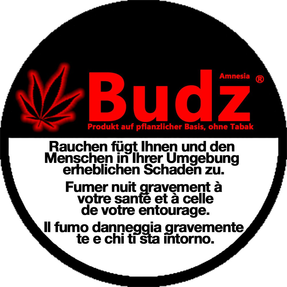 Amnesia - Budz