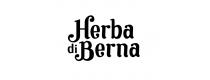 Herba di Berna